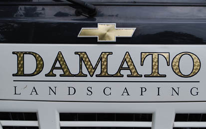 damato front vehicle lettering